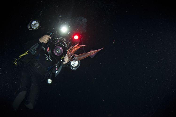 Подводная фотосесия на Бора-Бора