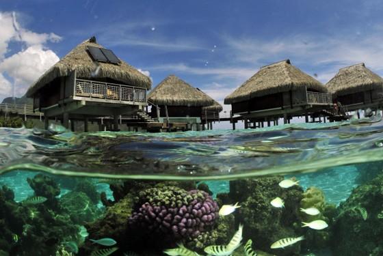 Бунгало на Бора-Бора - Французская Полинезия