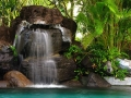 В джунглях Бора-Бора